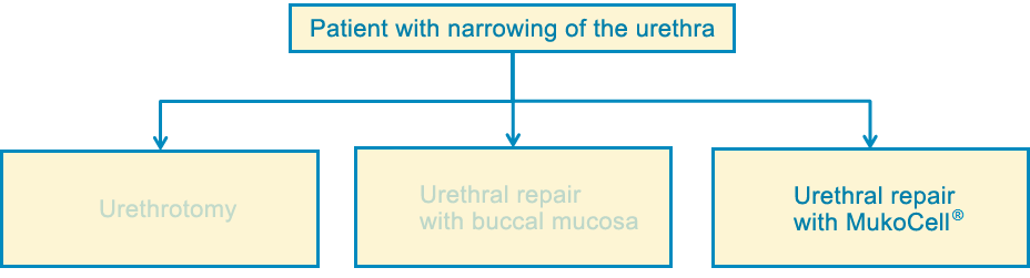 treatment: urethral repair with mukocell